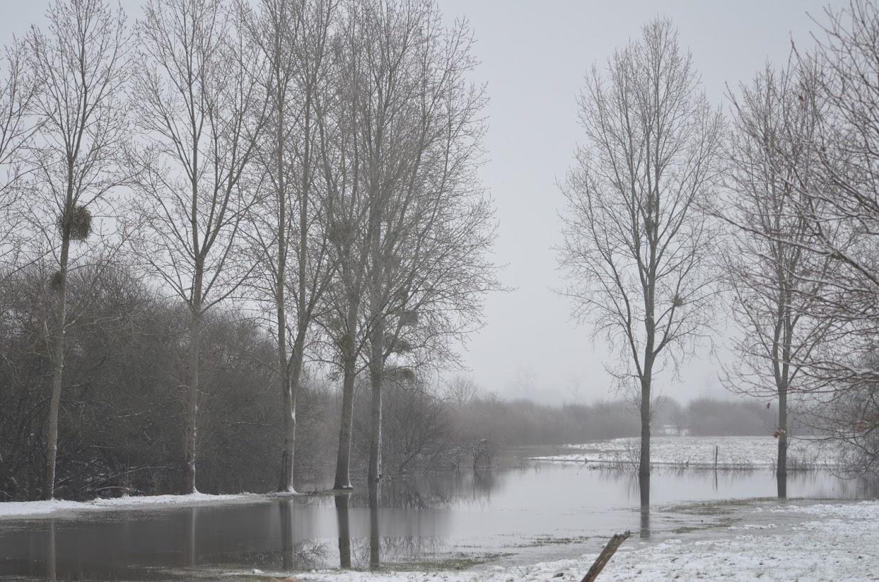 sous-neige